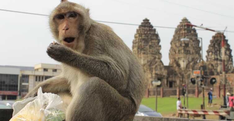 Bangkok: Private Car Hire to Lopburi the Monkey City