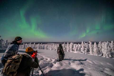 Rovaniemi: Discover the Northern Lights Photography Tour