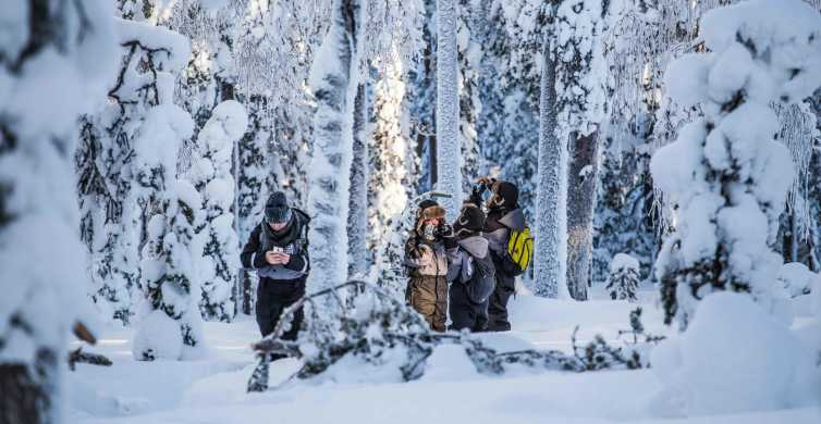 Rovaniemi: Nordic Forest Wilderness Photography Expedition