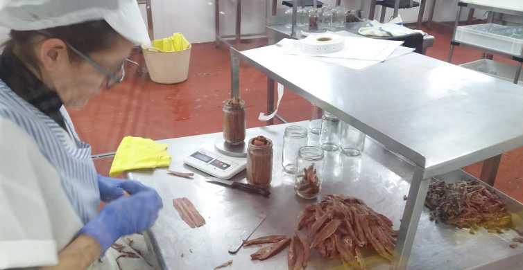 Santoña: Excursão de fábrica de anchova e passeio de barco