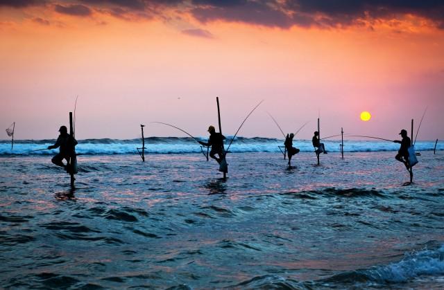 Galle en Bentota Day-Tour vanuit Colombo