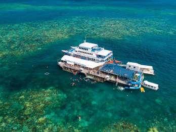 Cairns: Outer Great Barrier Reef - Ponton und Aktivitäten