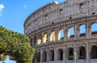 Rom: Privattour zum Kolosseum, Forum Romanum & Palatin