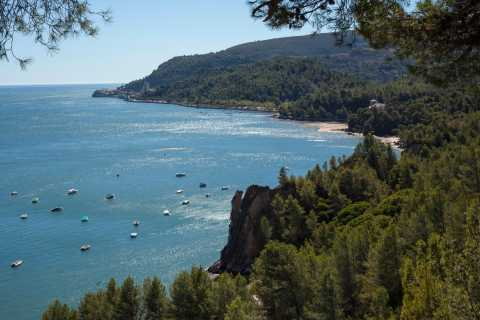 Arrábida: Full Day Tour of the Town with Wine Tasting