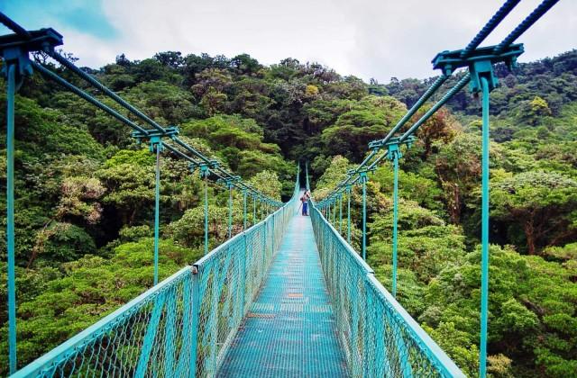 Vanuit San José: daguitstap hangbruggen Monteverde