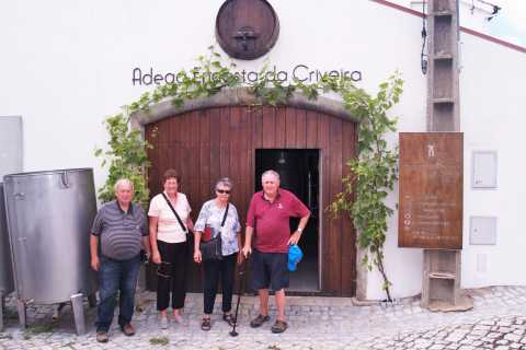 Coimbra: Wine Experience