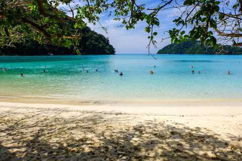 From Phuket/Khaolak: Surin Islands Snorkeling Day Trip