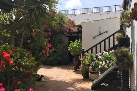 Fuerteventura Discovery Tour