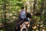 Whistler: Full-Day Horseback Riding Experience