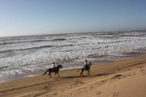 Essaouira: 3-Hour Horseback Ride