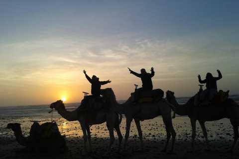 Essaouira: One Hour Dromedary Ride