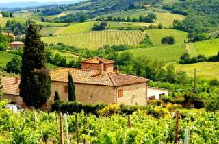 Ab Rom: Geschmäcker der Toskana mit Mittagessen & Wein