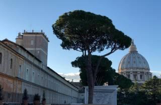Rom: Frühe Tour durch die Vatikanischen Museen mit Abholung
