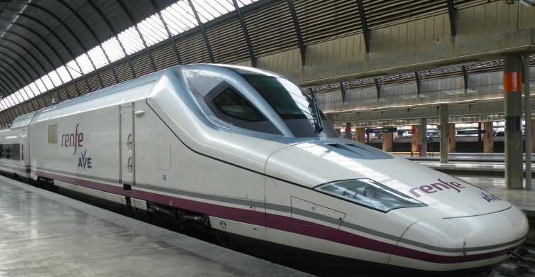 Seville: Transfer to Santa Justa Train Station