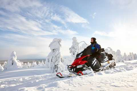 Fairbanks: 1-Hour Snowmobile Tour