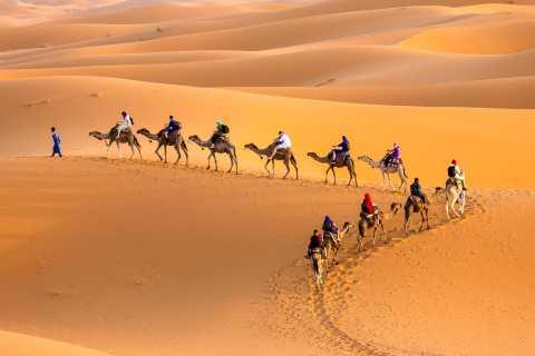 Douz 2-Day Sahara Desert Camel Trek