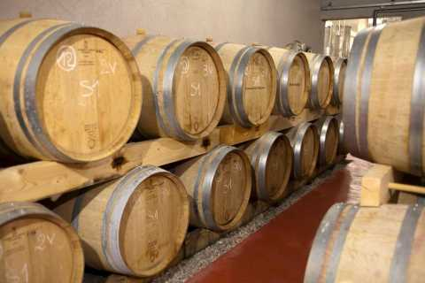 Marseille Vieux Port & Wine Tasting - Private Tour