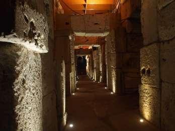 Antikes Rom & Kolosseum-Untergeschoss: Tour in Kleingruppe