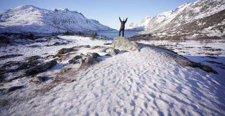 Tromsø: Subarctic Fjord Small Group Tour with Hotel Pickup