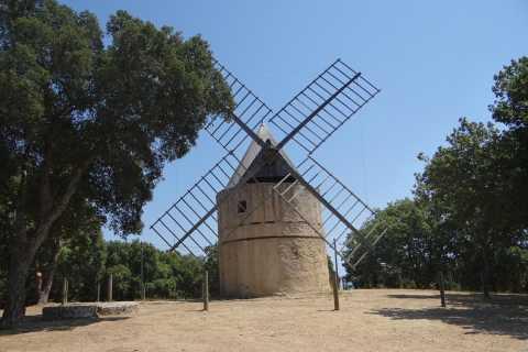 Coteaux d'Aix: Ste Victoire Wine Tour & Cezanne Mill Visit