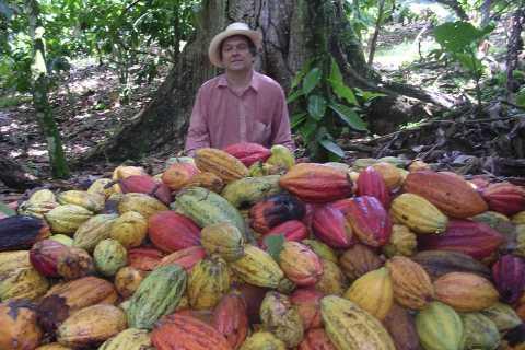 Santo Domingo: Chocolate and Cigar Discovery Tour