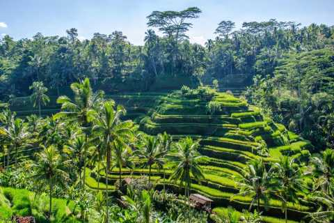 Ubud: 2-Day Heart of Bali Private Tour