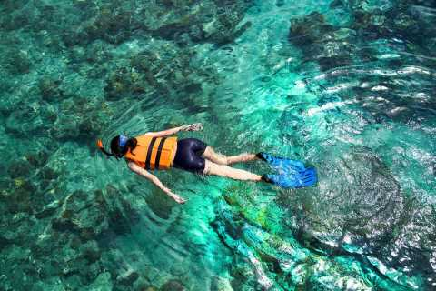 From Bali: Menjangan Island Private 3-Day Tour