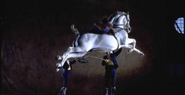 Jerez de la Frontera: How the Andalusian Horses Dance