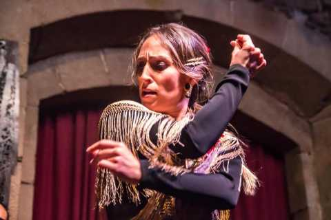 Barcelona: Private Walking Tour, Dinner, and Flamenco Show