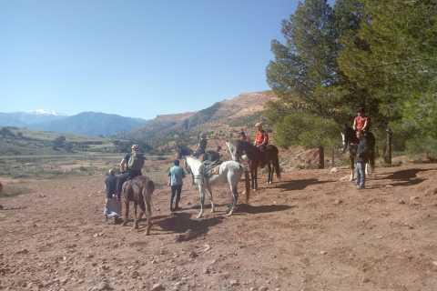 Marrakech: Atlas Mountains Horse Riding Day Trip