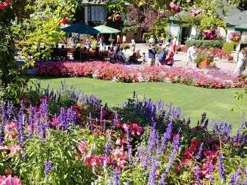 Victoria & Butchard Gardens: Private Tour ab Vancouver