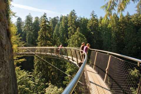 Vancouver: Capilano Suspension Bridge Park Self-Guided Tour