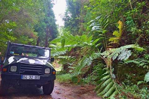 Madeira: Jeep Safari Tour
