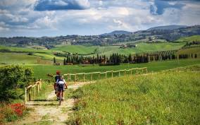 From Florence: Tuscany by E-Bike with Lunch and Wine Tasting