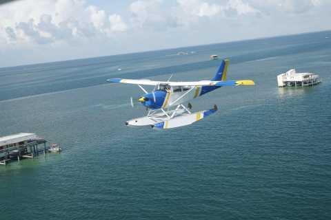 Miami: 1-Hour Skyline and Beaches Seaplane Tour