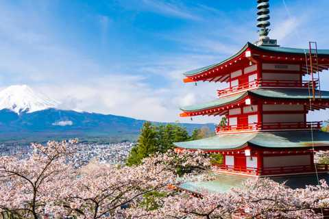 From Tokyo: Mt. Fuji Full-Day Sightseeing Trip