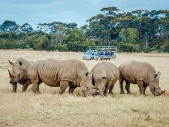 Werribee Open Range Zoo Melbourne: Tagesticket