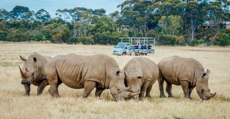 Melbourne: Werribee Open Range Zoo Admission Ticket