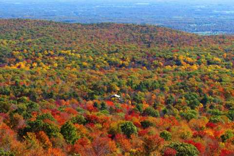 Private Herbstlaub-Helikopter-Tour durch das Hudson Valley