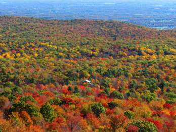 Private Herbstlaub-Helikopter-Tour durch das Hudson Valley. Foto: GetYourGuide