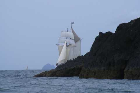 Bay of Islands: Full-Day Tall Ship Sailing Excursion