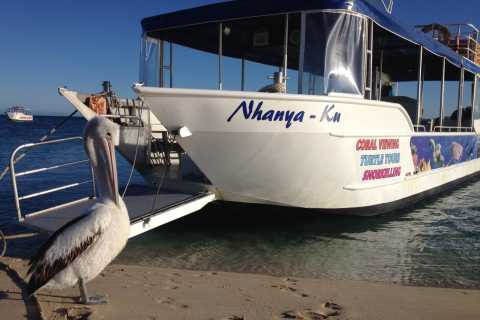 Coral Bay: Ningaloo Reef 3-Hour Turtle Ecotour