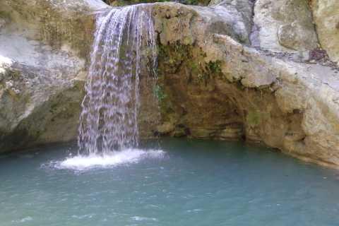 Puerto Plata: Half-Day Damajagua Waterfalls Adventure