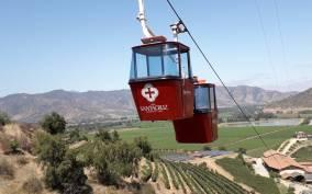 Private-Tour of Chilean Wine Country: Colchagua