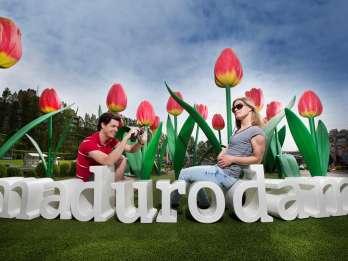 Kombi-Angebot: Keukenhof ab Den Haag & Madurodam