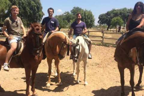 Vanuit Sevilla: 2 uur paardrijden in Aljarafe