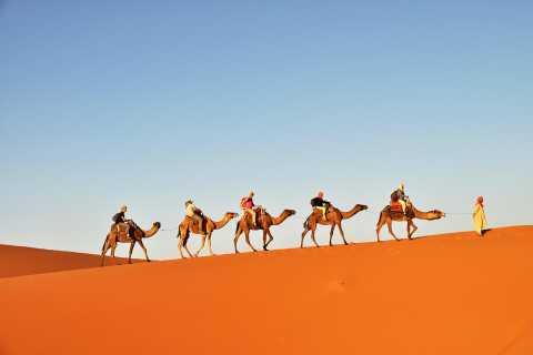 Tunisia: 3-Day Sahara Desert Camel Trek from Douz