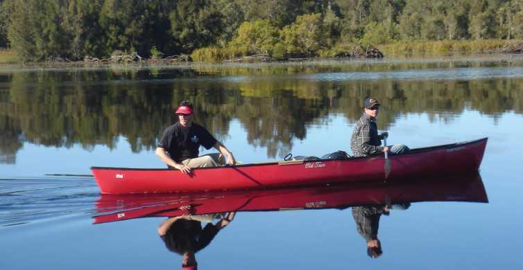 Noosa: Everglades Canoe Adventure with Lunch