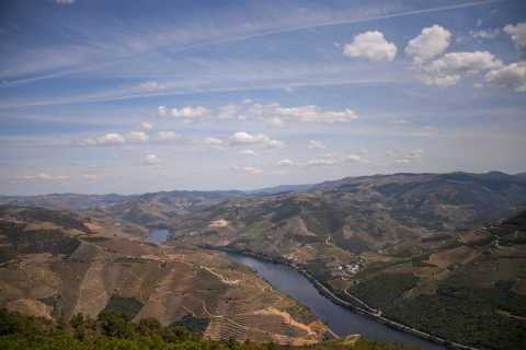 Casal de Loivos: River Douro and Pinhão with Vineyard Visit