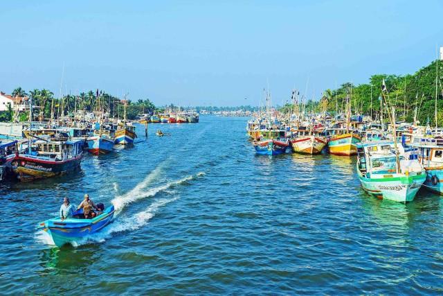 Negombo: Nederlands kanaal, Negombo-lagune, Muthrajawela-rondvaart